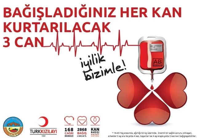 Kan Bağışının Faydaları